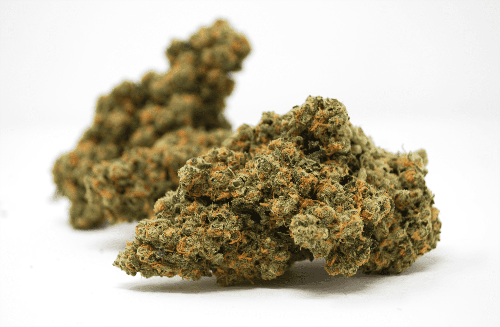 Berry Chill #7 is one of MAC's strains that's known to have high amounts of alpha and beta pinene.