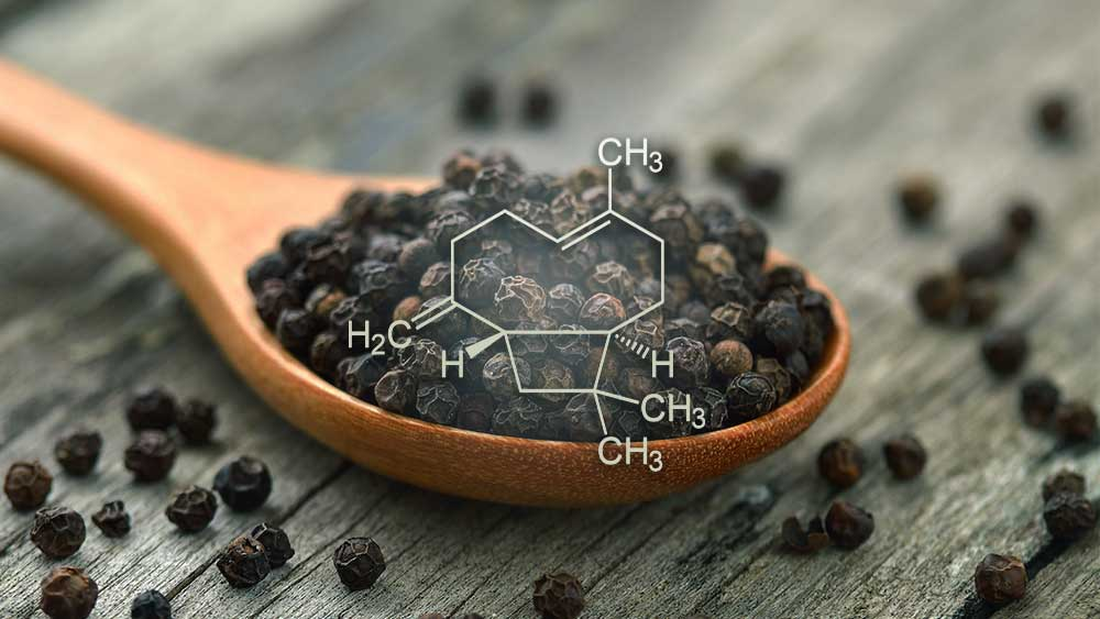 Structural formula of Caryophyllene placed over image of black pepper.